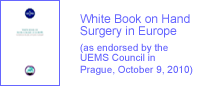 White Book on Hand Surgery in Europe